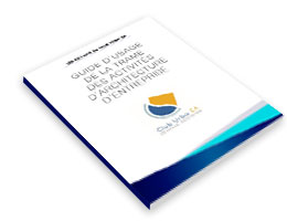 Guide d'usage de la trame des activités d'architecture d'entreprise